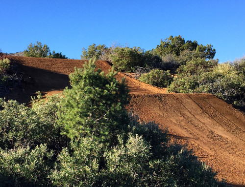 Crippen Outdoor MX Track